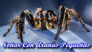 Soñar Con Arañas Chiquitas O Pequeñas