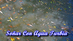 Soñar Con Agua Turbia