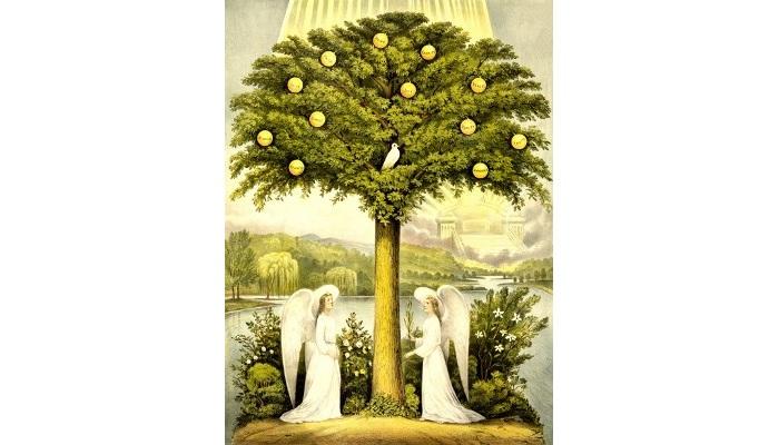 Simbolismo del árbol de la vida